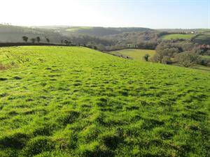 34.98 acres of Pasture Land For Sale at Overavon, Diptford