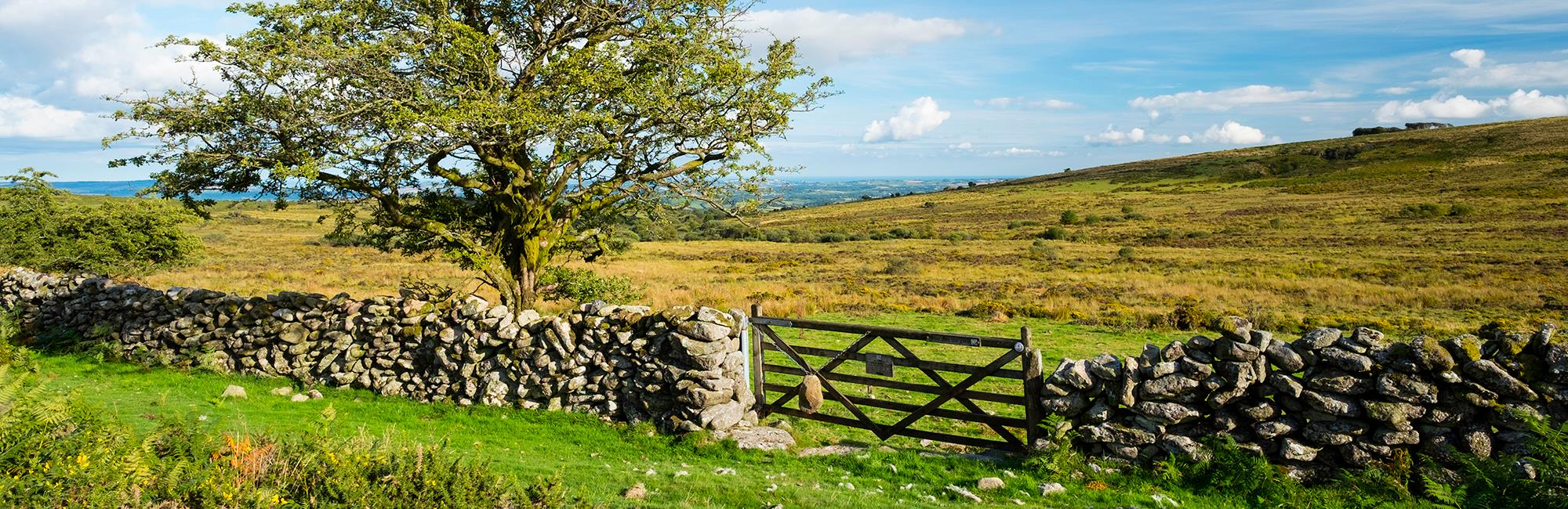 The 2020 Countryside Stewardship Scheme window has opened